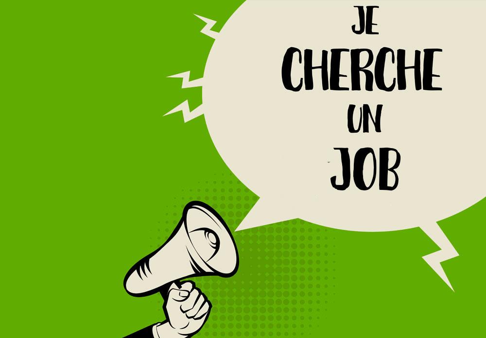 Chargé De Support Analytique / M.Stéphane NEGRAULT
