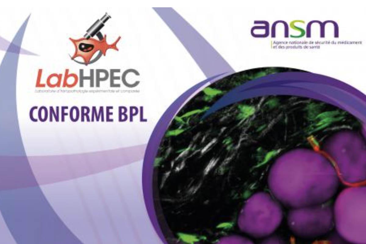 PREMIER Laboratoire Académique Français En Anatomie Pathologique BPL